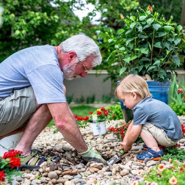 image of grandparent and grandchild gardening together